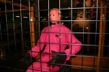 Crash Test Dummies Packing on Pounds to Reflect Obese Americans