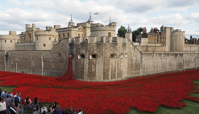 Tower of London Poppies Cannot Be Sold on eBay