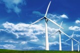 Wind Farms and Bird Deaths