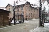 Auschwitz Liberation 70 Year Anniversary