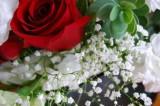 Valentine's Day Murders