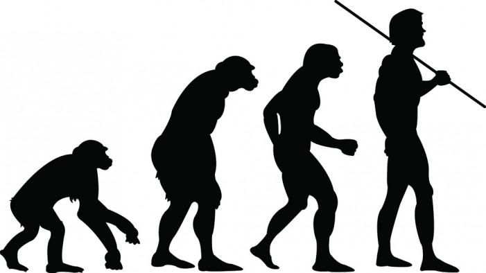 Human Evolution Is Unique?