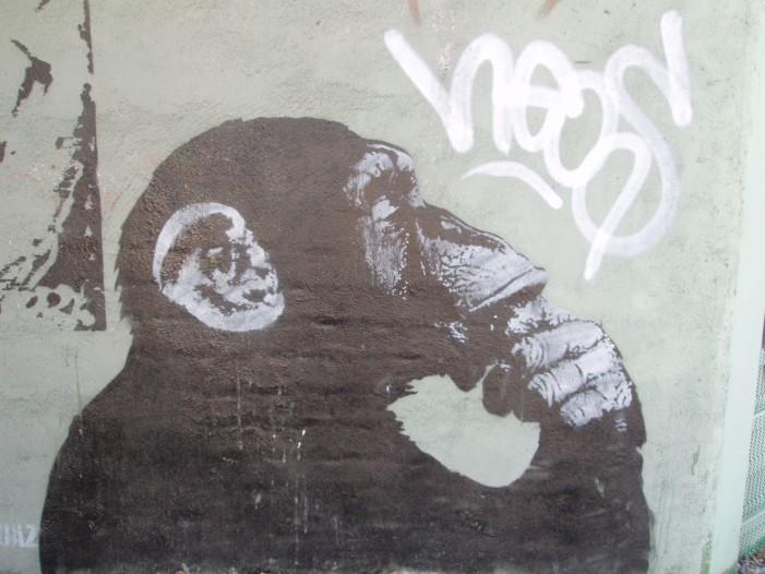 Gaza Strip Feels Presence of Controversial Graffiti Artist Banksy [Video]