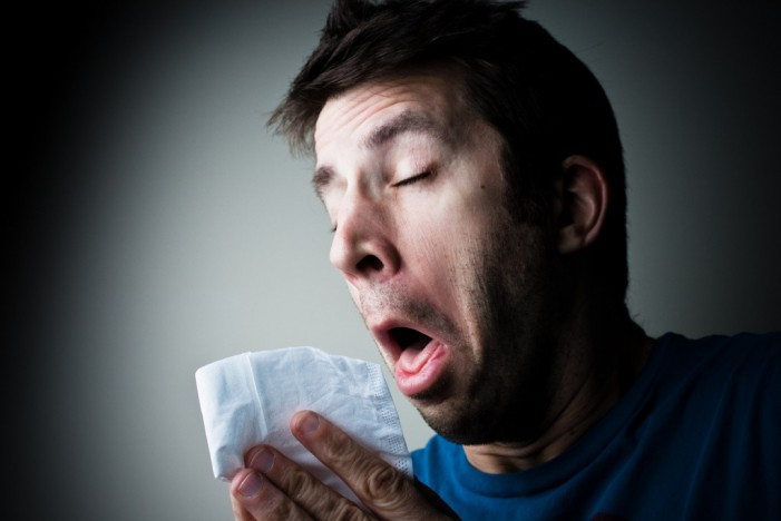 Help for Allergy Sufferers