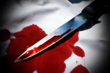 Amanda Knox Appeals Murder Conviction