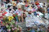 Boston Marathon Bombing Suspect Tsarnaev Admits Role