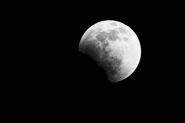 Lunar Eclipse: Caught in the Shadows