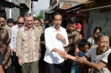 Indonesia President Joko Widodo to Allow Australians to Be Executed