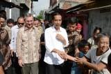 Indonesia President Joko Widodo to Allow Australians to Be Executed