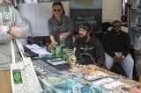 Cannabis Cup Kicks Off in Denver