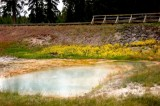 Yellowstone National Park, Super Volcano Is Active