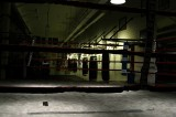 Mayweather Camp: Unusually Calm, Upbeat and Poised for Destructive Combat