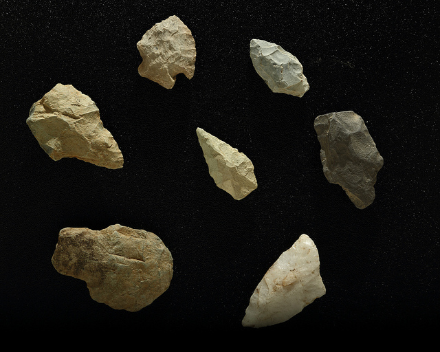Stone Tool Discovery Suggests Primates Had Primitive Technology