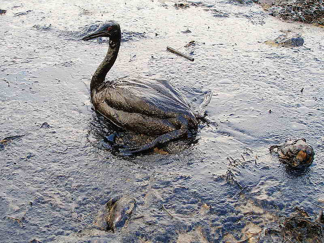 Oil Spills in a World Concerned About Climate and Environment
