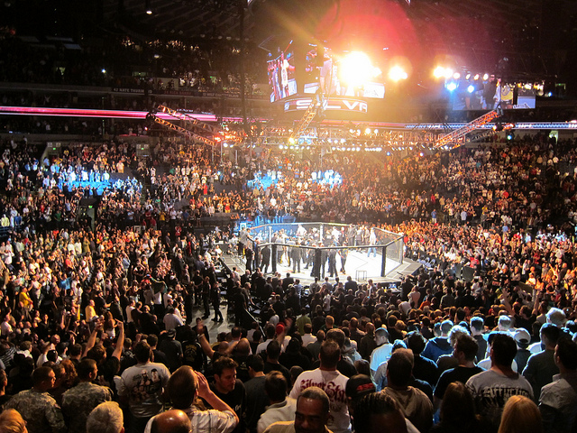 UFC 187 Fight Card Changes