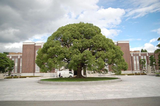 Kyoto University Dominates the News Cycle