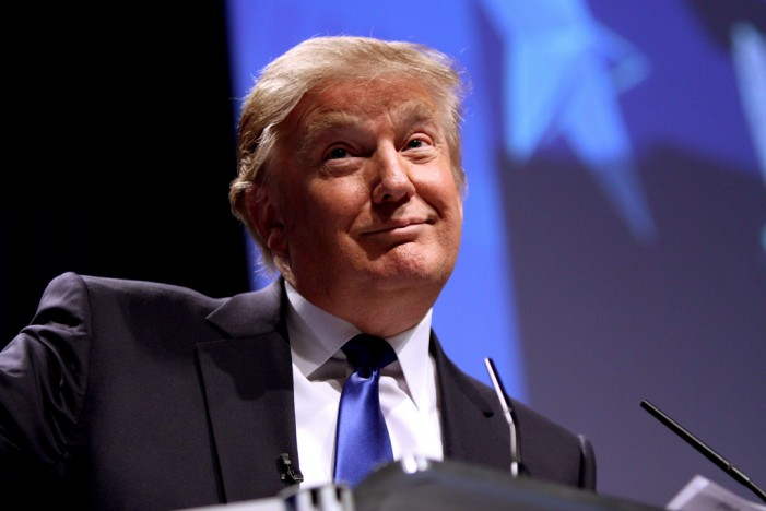 'The Apprentice' Upcoming Season Canceled