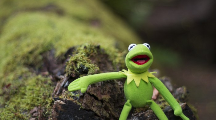 Kermit the Frog and Creator Jim Henson Had a Long Partnership [Video]