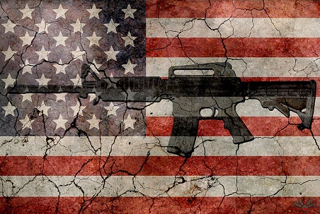 American Crisis: Gun Laws, Mental Illness or a Combination?