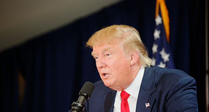 Immigration Ideas Shared by Donald Trump and Sharron Angle