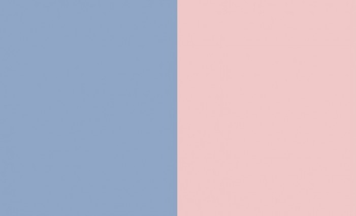 Pantone Colors 2016 in Two Shades