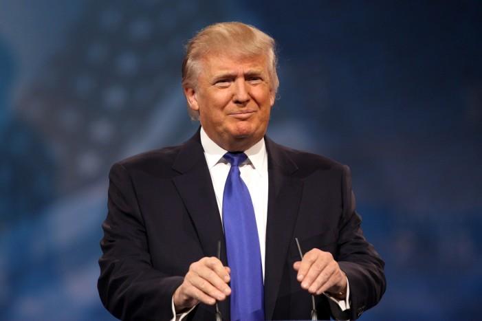 Bernie Sanders and Donald Trump Win 2016 New Hampshire Primary