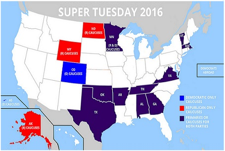 Super Tuesday for Dummies:  Why Vote? [Video]