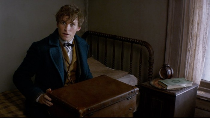 The Links Between 'Fantastic Beasts' and Harry Potter's World