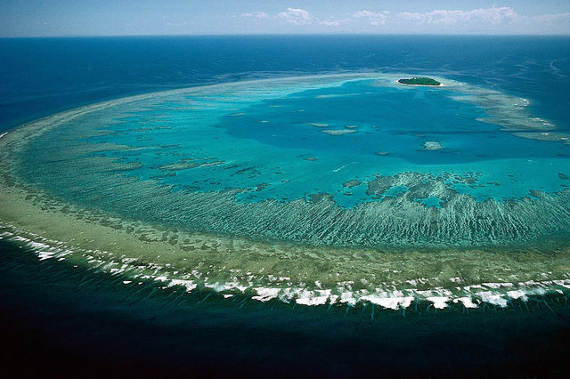 Great Barrier Reef Death Threat