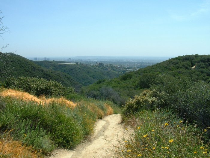 11 Hiking Spots in Los Angeles