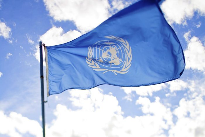 U.N. to Investigate International Law Violations