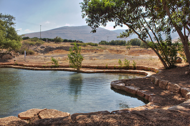 Israel's Proposed 'Garden of Eden' for Disabled Causes Controversy