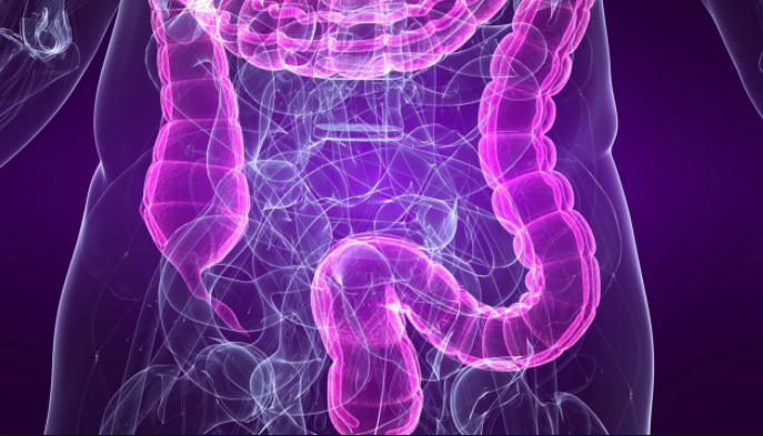 Is SIBO the Underlying Cause of Your IBS? (Here Is What You Need to Know!)