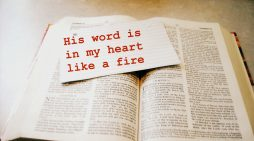 Believers Seek Solace in the Words of the Holy Bible