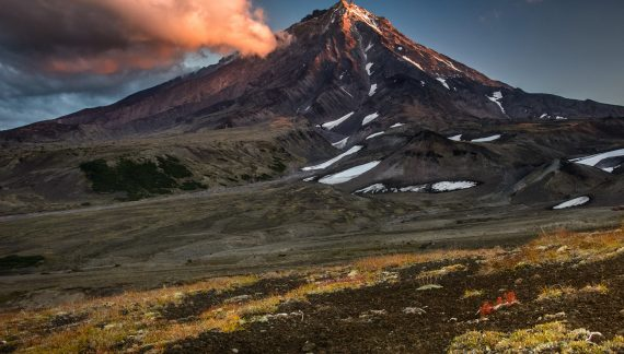 The Permian-Triassic Extinction Caused by Massive Volcanic Eruption