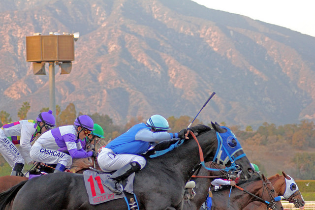 Santa Anita Race Track Has 20th Horse Death Since December