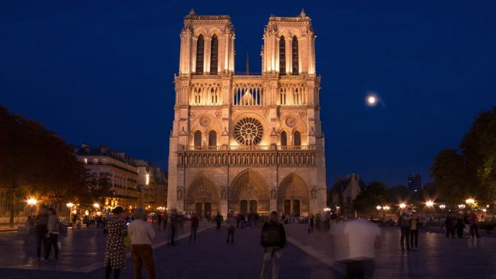 Notre Dame Cathedral in the Process of Rebuilding Its Self