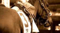 Santa Anita 'Racetrack of Death' Claims the Life of a 24th Horse