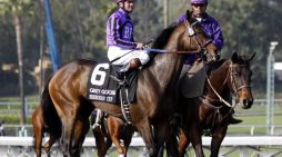 Santa Anita Race Track Kills 30th Horse, Trainer Jerry Hollendorfer Banned