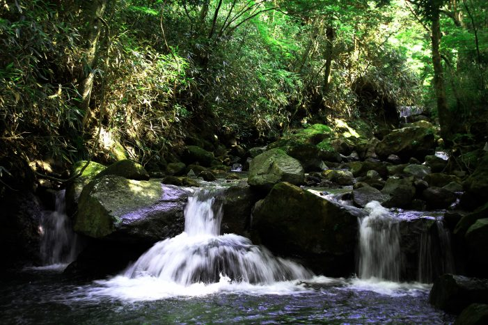 Negative Ions and NK Cells Concerning Cancer
