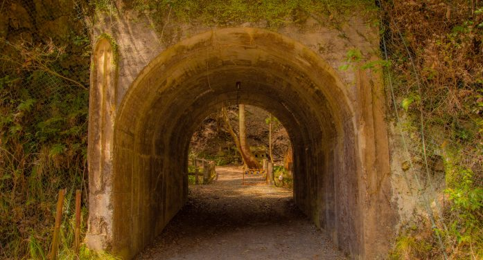 Tunnel Found in San Diego Leads to Drug Discovery